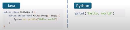 Python vs Java caption Fef Foundation